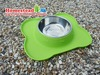 Stainless Steel Pet Bowl with Silicone Mat Green