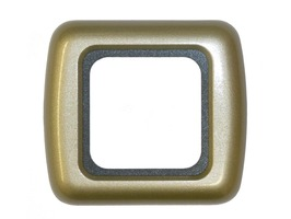 CBE Support & Outer Frame - Champagne