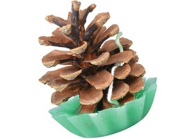 Fallen Fruits Pinecone Fire Starters Set 10