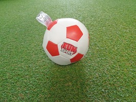 "Fun Sport 5"" Soft Soccer Ball"